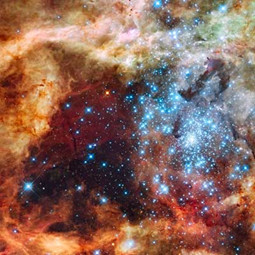 NASA image of Tarantula Nebula