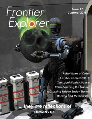 Issue 17 Cover - Medium